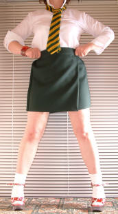 adult wrap over school skirt in green